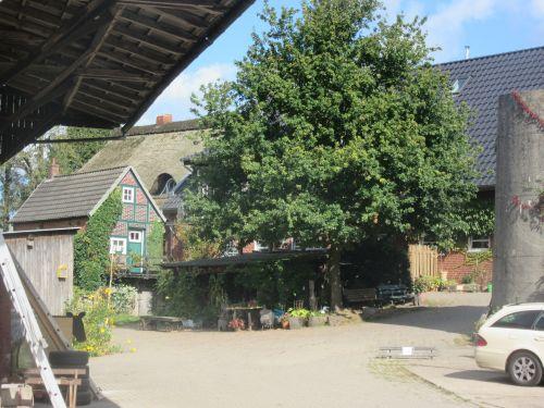 Der Biohof Kaemena im Bremer Blockland