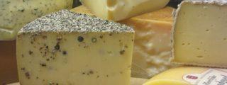 Käsestücken in der Käsetheke im Oecotop